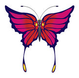 Butterfly. Raster illustration, the exotic butterfly on a white background Royalty Free Stock Image