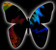 Free Butterfly 2 Stock Photography - 15484122