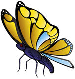Butterfly. Vector illustration of a small butterfly Royalty Free Stock Photos