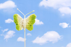 Free Butterfly Royalty Free Stock Photography - 2136287