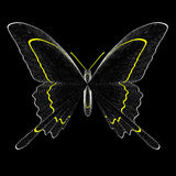 Butterfly. A simple illustration of a black butterfly Stock Photo