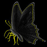 Butterfly. A simple illustration of a black butterfly Stock Image