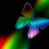 Butterfly. A space background with colorfull butterfly Royalty Free Stock Photography