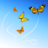 Butterfly. On the blue background Royalty Free Illustration