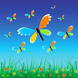 Butterfly. Grass, flowers and blue sky Royalty Free Illustration
