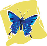 Butterfly. Beautiful  butterfly Spreading its wings Stock Images