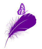 Butterfly. Stock Photos