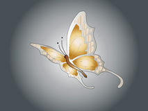 Butterfly. Easy to resize or change color Royalty Free Stock Photo