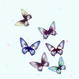 Butterfly1 Royaltyfri Foto