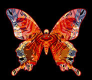 Butterfly. Vector illustration - beautiful butterfly design element Royalty Free Stock Photography