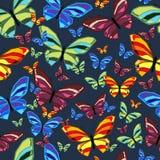 Butterfly3 Royaltyfria Foton