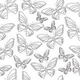 Butterfly4 Arkivfoto