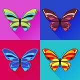 Butterfly5 Royaltyfri Bild