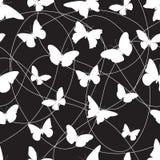 Butterfly9 Arkivfoto