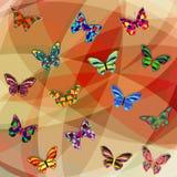 Butterfly11 Royaltyfri Foto