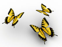 Free Butterfly Royalty Free Stock Photography - 5407717