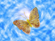 The butterfly. On a background of the sky Royalty Free Stock Photos