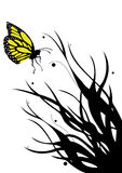 Butterfly. Abstract floral vector background with a butterfly Stock Photography