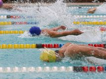 Butterfly. Swim stroke race Stock Photos