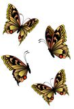 Butterfly. Beautiful butterflies against white colours Stock Illustration