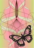 butterfly Στοκ Φωτογραφία