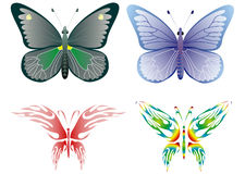 Butterfly. Miltie colored butterflies.Vector illustration Stock Image