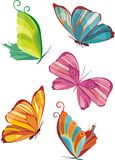 Butterfly. Vector illustration of colorful butterflies Stock Photography