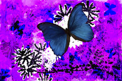 Butterfly Abstract. A beautiful Blue Buttterfly with added abstract elements Royalty Free Stock Image