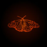 Butterfly abstract design Royalty Free Stock Photos