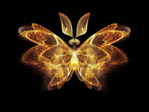 Butterfly Abstraction Stock Images