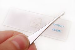 Butterfly Antenna royalty free stock image