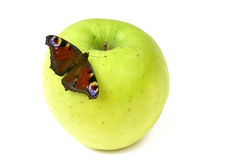 Butterfly on apple Royalty Free Stock Photo