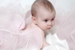 Butterfly Baby Royalty Free Stock Images