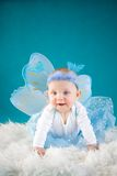 Butterfly baby. Baby girl on blue background Stock Image