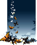 Butterfly background. Vector illustration butterfly on colour background in nature Royalty Free Stock Photo