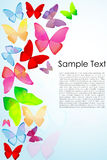 Butterfly background Royalty Free Stock Photography