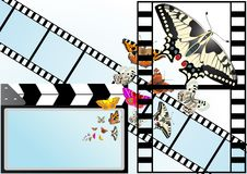 Butterfly on the background of the film Stock Photo