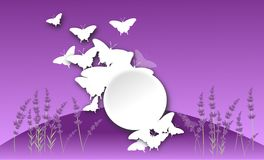 Butterfly background lavender Royalty Free Stock Image