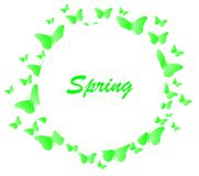 Butterfly background spring Royalty Free Stock Photos