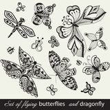 Butterfly Background, vintage insect set, Stock Photo