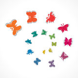 Butterfly backrgound. Colorful butterfly design background Stock Photography