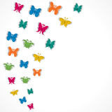 Butterfly backrgound. Colorful butterfly design background Royalty Free Stock Photography