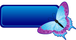 Butterfly banner Royalty Free Stock Photos