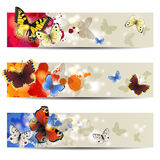 Butterfly banners Stock Photos