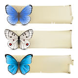 Butterfly banners Royalty Free Stock Image
