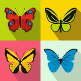 Butterfly banners set, flat style. Butterfly banners set in flat style for any design Royalty Free Stock Images