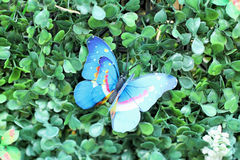 Butterfly beautiful  artificial for decorative Stock Images