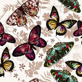 Butterfly beautiful. Seamless pattern for background Stock Photo