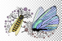 Butterfly and a bee with transparent wings. On a transparent background. On the wings of pollen in the form of flowers. Vector illustration for your design Stock Photography