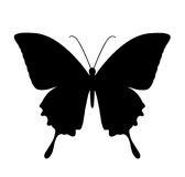 Butterfly, black silhouettes on white Stock Photos